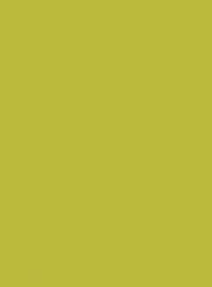 Solid LIGHT GREEN